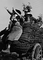 Three women up on a cart decorated with flowers, loaded with grapes. Photograph by Janine Niepce (1921-2007). © Janine Niepce / Roger-Viollet