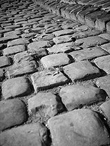 Dead leaves on cobblestones. Paris, November 1948.  © Roger-Viollet