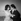 """""""Les Mordus"""", film de René Jolivet. Bernadette Lafont et Sacha Distel. France, 21 janvier 1960. © Alain Adler / Roger-Viollet"""