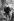 Christophe Colomb (1450-1451-1506), navigateur génois, en Italie, dans sa jeunesse. Gravure XIXème siècle. © Roger-Viollet