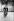 Maurice Béjart (1927-2007), danseur et chorégraphe français, Luciana Savignano (née en 1943), danseuse italien, et Jorge Donn (1946-1992), danseur argentin, lors d'une répétition. Bruxelles (Belgique), mars 1975. © Colette Masson/Roger-Viollet