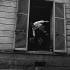 """L'Homme de Rio"", film de Philippe de Broca. Jean-Paul Belmondo. France-Italie, 2 août 1963. © Alain Adler/Roger-Viollet"