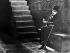 """Charlie Chaplin (1889-1977), acteur et réalisateur anglais, dans """"Les Lumières de la ville"""". 1930.  © Roger-Viollet"""