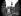 Décoration des Galeries Lafayette à l'occasion du couronnement de la reine Elisabeth II d'Angleterre. Paris, juin 1953.  © Roger-Viollet