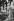 Marchand de dindes de Noël à Smithfield Market. Londres (Angleterre), 1958. © Jean Mounicq/Roger-Viollet