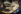 """Jacopo da Pontormo (1494-1557). """"Vénus et Cupidon"""", 1532. Galerie de l'Académie, Florence (Italie). © Alinari/Roger-Viollet"""