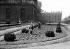 Guerre 1939-1945. Culture de haricots entre la rue de Rivoli et la colonnade du Louvre. Paris (Ier arr.), juillet 1943.     © LAPI / Roger-Viollet