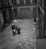 Chanteurs dans une cour. Paris, vers 1940. © Gaston Paris / Roger-Viollet