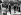 Guerre 1939-1945. L'amiral Darlan, le général Eisenhower, l'amiral Cunningham et le général Giraud, au monument aux morts d'Alger (Algérie), 11 novembre 1942. © Roger-Viollet