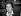Françoise Giroud, journaliste et femme politique française. Vente du Pen-Club. Novembre 1993. © Roger-Viollet