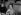 Françoise Giroud (1916-2003), journaliste et femme politique française. Vente du Pen-Club. France, décembre 1981. © Roger-Viollet
