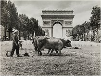 "The Great harvest organized by the ""Centre national des jeunes agriculteurs"", agricultural union, avenue des Champs-Elysées and Arc de Triomphe. Paris (VIIIth arrondissement), on June 24, 1990. Photograph by Edith Gérin (1910-1997). Bibliothèque historique de la Ville de Paris. © Edith Gérin / BHVP / Roger-Viollet"