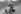 Charles Aznavour (1924-2018), auteur-compositeur-interprète et acteur français d'origine arménienne, en Solex. France, mars 1959. Photographie de Bernard Liptnizki (1930-2012). © Bernard Lipnitzki / Roger-Viollet