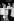 """Federico Fellini (1920-1993), scénariste et réalisateur italien, recevant la Palme d'Or au Festival de Cannes pour son film """"La Dolce Vita"""". A ses côtés : Giulietta Masina. 1960. © Roger-Viollet"""