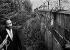 Martin Luther King (1929-1968), pasteur américain en visite à Berlin (Allemagne), 1964. © Ullstein Bild / Roger-Viollet