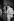 Mariage de Loulou de la Falaise (1948-2011) et Thadée Klossowski de Rola, fils du peintre Balthus. Yves Saint Laurent (1936-2008), couturier français. Paris. 30 juin 1977. © Jack Nisberg / Roger-Viollet