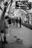 Londres (Angleterre). Station de métro de Piccadilly Circus. © Roger-Viollet