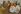 Visite de S. M. Alphonse XIII à Paris. Mai 1905. Alphonse XIII, roi espagnol (1886-1941) et Emile Loubet, homme état français (1838-1929). Mai 1905. Paris, bibliothèque de l'Hôtel de Ville. © BHdV / Roger-Viollet