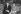 Lech Walesa (né en 1943), homme politique et syndicaliste polonais et chef du syndicat Solidarnosc, reçu à Matignon par Pierre Mauroy, Premier ministre. A gauche, Bronislaw Geremek. Paris, 20 octobre 1981. © Jean-Régis Roustan / Roger-Viollet
