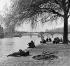Flâneurs à la pointe du Vert-Galant sur l'ile de la Cité. Paris, années 1950. Photographie de Janine Niepce (1921-2007). © Janine Niepce/Roger-Viollet