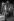 Dario Moreno (1921-1968), acteur et chanteur français d'origine turque. Paris, Club Saint-Hilaire, 1962. © Noa / Roger-Viollet