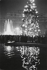 Noël à Trafalgar Square. Londres (Angleterre), 1958. © Jean Mounicq/Roger-Viollet