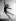 """""""La Danse inachevée"""" (The Unfinished Dance), film de Henry Koster. Cyd Charisse. Etats-Unis, 1947. © TopFoto / Roger-Viollet"""