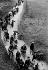 Guerre 1939-1945. L'exode de mai-juin 1940 en France. © LAPI / Roger-Viollet