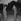 William Holden (1918-1981), acteur américain. Paris, années 1950. © Roger-Viollet