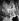 Couronnement de la reine Elisabeth II (née en 1926). Londres (Angleterre), palais de Buckingham, 2 juin 1953. © PA Archive/Roger-Viollet