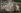 """Sandro Botticelli (1445-1510). """"La Naissance de Vénus"""", vers 1485. Florence, musée des Offices.  © Roger-Viollet"""