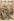 """""""Au Thibet (Tibet), le Dalaï-Lama de Lhassa fuit la domination anglaise"""". """"Le Petit Journal"""", dimanche 20 novembre 1904. © Collection Roger-Viollet / Roger-Viollet"""