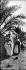 Algérie. Vers 1900.      © Léon et Lévy/Roger-Viollet