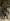 """Henri Gervex (1852-1929) et Alfred Stevens (1823-1906). """"Kléber et Monge, fragment du Panorama du Siècle"""". Huile sur toile, 1889. Musée des Beaux-Arts de la Ville de Paris, Petit Palais. © Petit Palais / Roger-Viollet"""