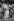 """Line Renaud (née en 1928), chanteuse et meneuse de revue française, lors de son spectacle """"Parisline """"au Casino de Paris. Paris (IXème arr.), 1976-1979. © Jacques Cuinières / Roger-Viollet"""
