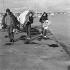 Eric Tabarly (1931-1998), navigateur français avec l'un de ses équipiers, Yves Guégan. La Trinité-sur-Mer (Morbihan), avril 1968. © Jacques Cuinières / Roger-Viollet
