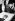 Hosea Williams (1926-2000), pasteur américain et militant des droits civiques américain, se recueillant au-dessus du cercueil de Martin Luther King (1929-1968), pasteur américain et leader de la défense des droits civiques, assassiné le 4 avril à Memphis. Atlanta (Géorgie, Etats-Unis), 8 avril 1968. © TopFoto / Roger-Viollet