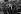 Mariage de Sylvie Vartan (née en 1944) et de Johnny Hallyday (1943-2017). Les mariés accueillis par la foule qui les attendait à la sortie de l'église de Loconville (Oise) où s'est déroulée la cérémonie religieuse. 12 avril 1965. Photographie d'André Grassart (né en 1935). Fonds France-Soir. Bibliothèque historique de la Ville de Paris. © André Grassart / BHVP / Roger-Viollet