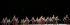 """""""Decadance"""", entrée au répertoire de l'Opéra Garnier et chorégraphié par Ohad Naharin. Lumieres : Avi Yona Bueno. Scénographie : Avi Yona Bueno. Costumes : Rakefet Levy. Compagnie : Ballet de l'Opéra national de Paris. Photographie de Colette Masson (néen en 1934). Paris, Palais Garnier, le 22 septembre 2018. © Colette Masson / Roger-Viollet"""